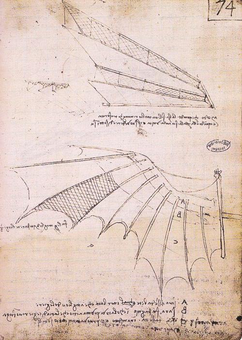 Имитируя крыло птицы с перьями, Леонардо разработал крылья с раздвижными дверцами из сетей, тростника или бумаги, которые открываются при взлете.
